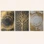 Quadro Abstrato Luxo Dourado e Preto Árvore - Kit 3 telas