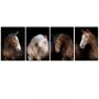 Quadro Cavalos Moderno - 4 telas