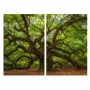 Quadro  Árvore Grande Luxo -  Kit 2 telas