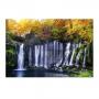 Quadro Cachoeira e Natureza Flores - Tela Única