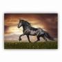 Quadro Cavalo Galopando - Tela Única