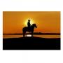 Quadro Cavalos Clássico Por do Sol - Tela Única