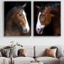 Quadro Cavalos Marrom -  Kit 2 telas