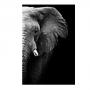 Quadro Elefante em foco Vertical Preto e Branco Coleção Savana Decor - Tela Única
