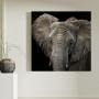 Quadro Elefante Sépia Quadrado - Tela Única