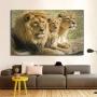 Quadro Família Leão 1 filhote Colorido Horizontal - Tela Única