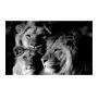 Quadro Família Leão 1 filhote Preto e Branco - Tela Única