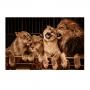 Quadro Família Leão Luxo Colorido - Tela Única