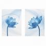 Quadro Flor Delicada Azul -  Kit 2 telas