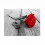 Quadro Flor Rosa Vermelha Horizontal - Tela Única