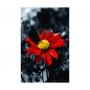 Quadro Flor Vermelha Vertical - Tela Única