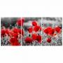 Quadro Flores Vermelhas Jardim Colorido - Kit 3 telas