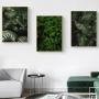 Quadro Folhas Natureza 2 - Kit 3 telas