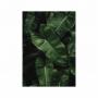 Quadro Folhas Natureza Luxo 2 - Tela Única