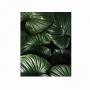 Quadro Folhas Natureza Luxo 4 - Tela Única