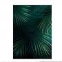 Quadro Folhas Natureza Luxo 6 - Tela Única