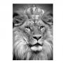 Quadro Leão Coroa - Tela Única