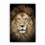 Quadro  Leão da Tribo de Judá King - Tela Única