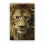 Quadro Leão Marfim - Tela Única