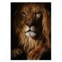Quadro Leão Rei Savana - Tela Única