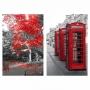 Quadro Londres e Árvore da Vida -  Kit 2 telas