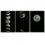 Quadro Luar Noite Estrelada - Kit 3 telas
