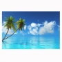 Quadro Praia Paradisíaco Coqueiro - Tela Única