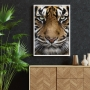 Quadro Tigre Face - Tela Única