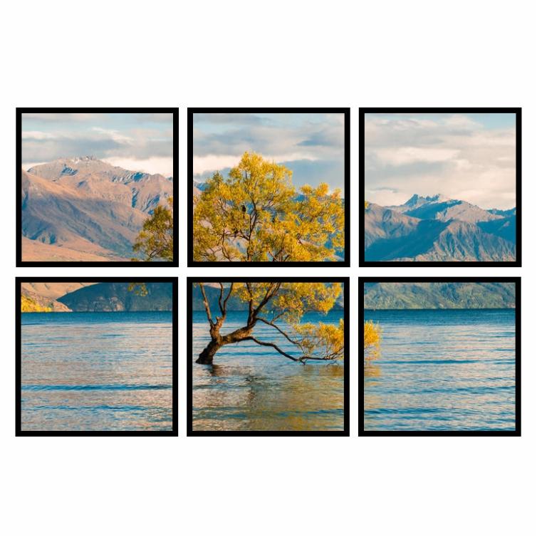 Kit Quadros Árvore Wanaka Tree Nova Zelândia Premium - Kit 6 telas