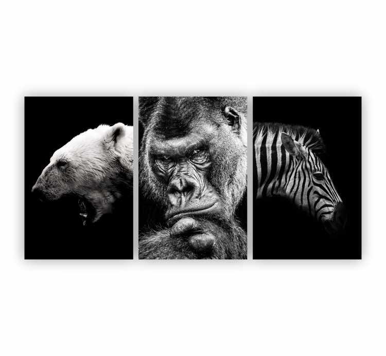 Quadro Animais Selvagens Preto e Branco - Kit 3 telas