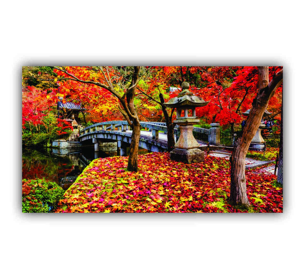 Quadro Árvore Outono Florido - Tela Única