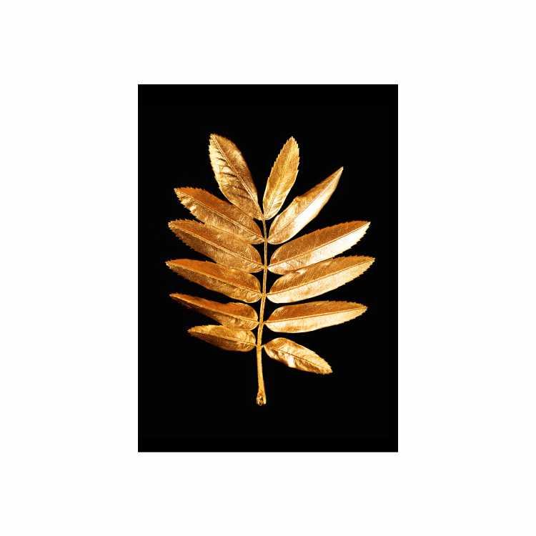 Quadro Folha Seca Preto e Dourado 3 - Tela Única