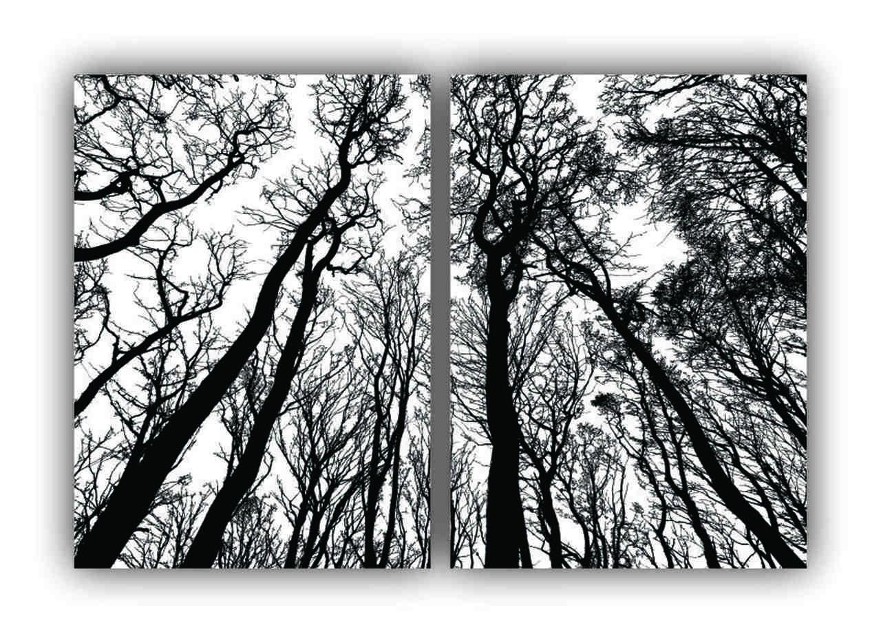 Quadro Decorativo Árvores Folhas Secas Preto e Branco Clássico -  Kit 2 telas
