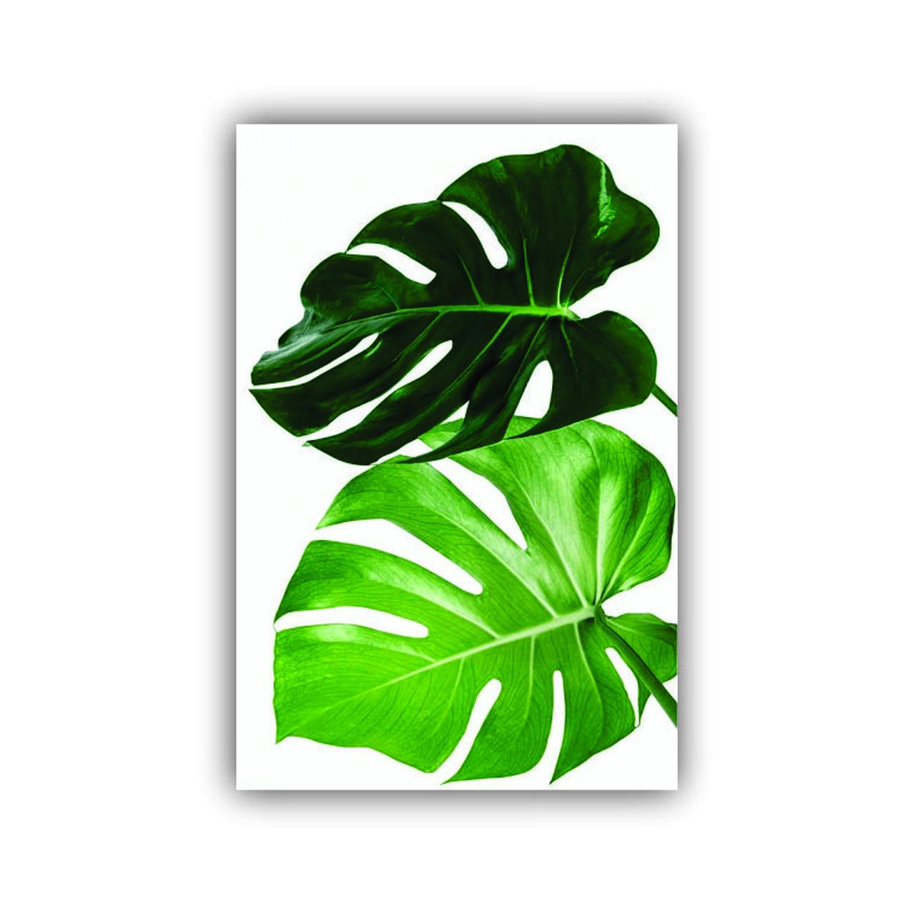 Quadro Decorativo Costela de Adão Duas Folhas Natureza - Tela Única