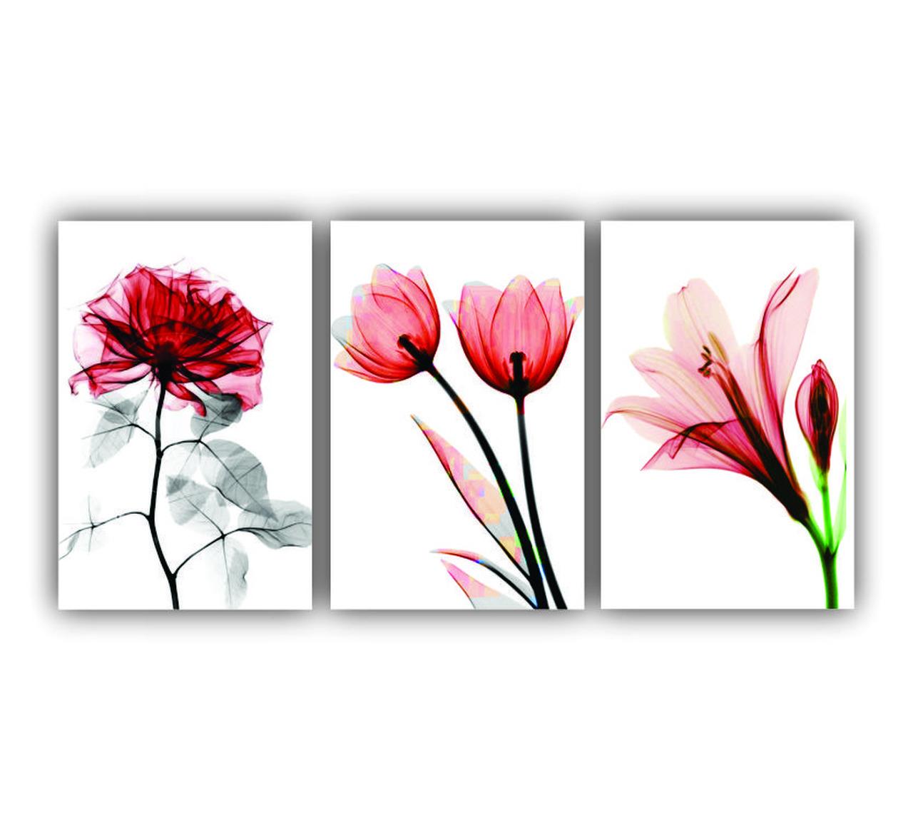 Quadro Decorativos Flores Finas Rosa Romance - Kit 3 telas