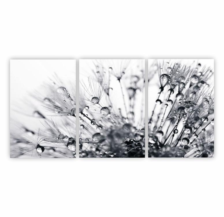 Quadro Dente de leão Delicado Preto e Branco - Kit 3 telas