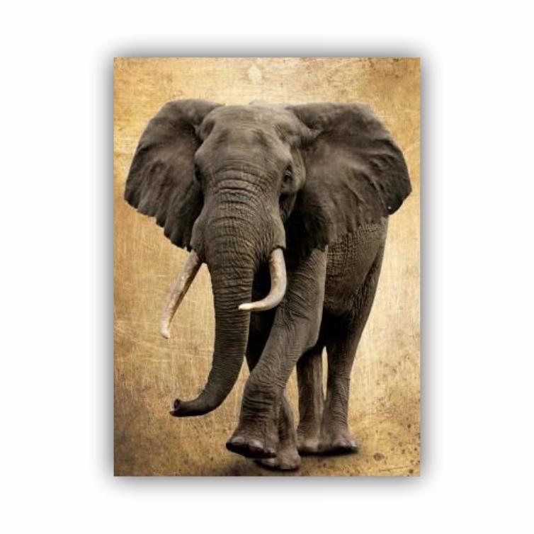 Quadro Elefante Vertical Luxo - Tela Única