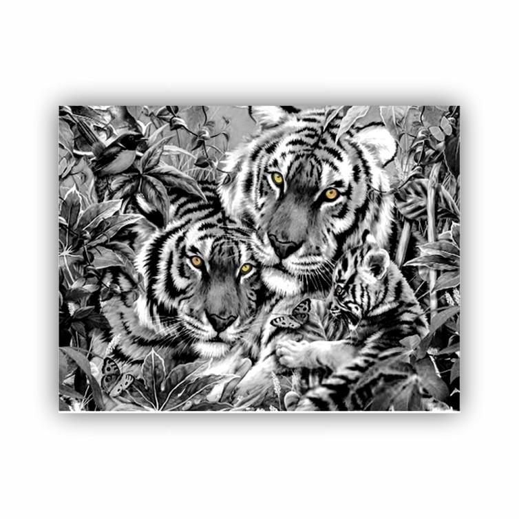 Quadro Família Tigre Olhos Coloridos - Tela Única