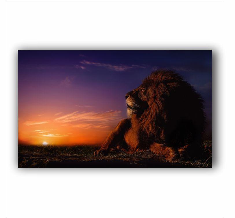 Quadro Leão Da Tribo de Judá Por do Sol Horizontal - Tela Única