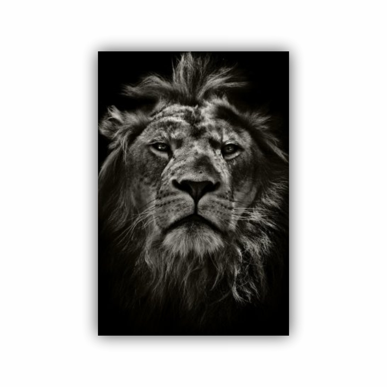 Quadro Leão de Judá Face - Tela Única