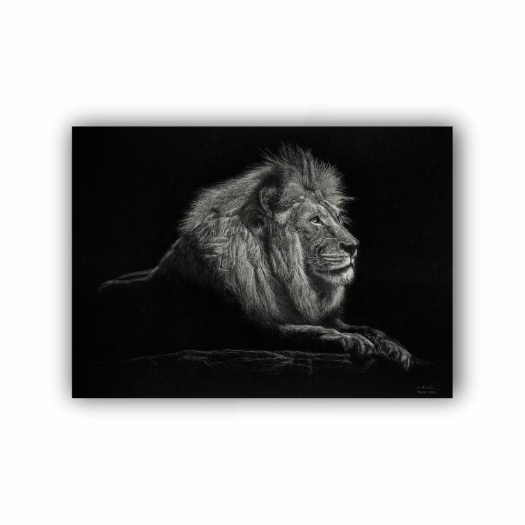 Quadro Leão Rei de Judá Perfil - Tela Única
