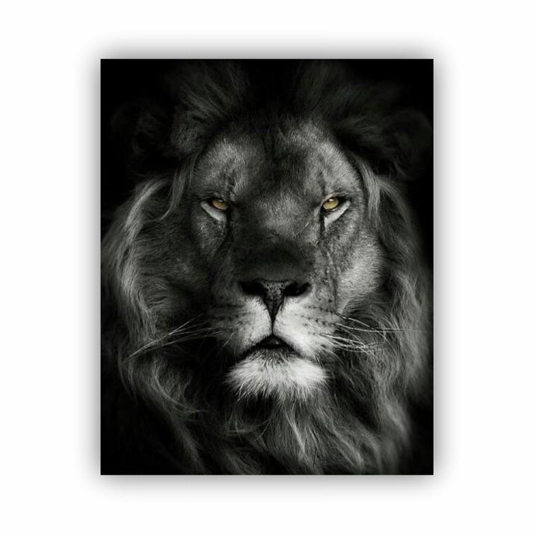 Quadro Leão Rei Preto e Branco Luxo - Tela Única