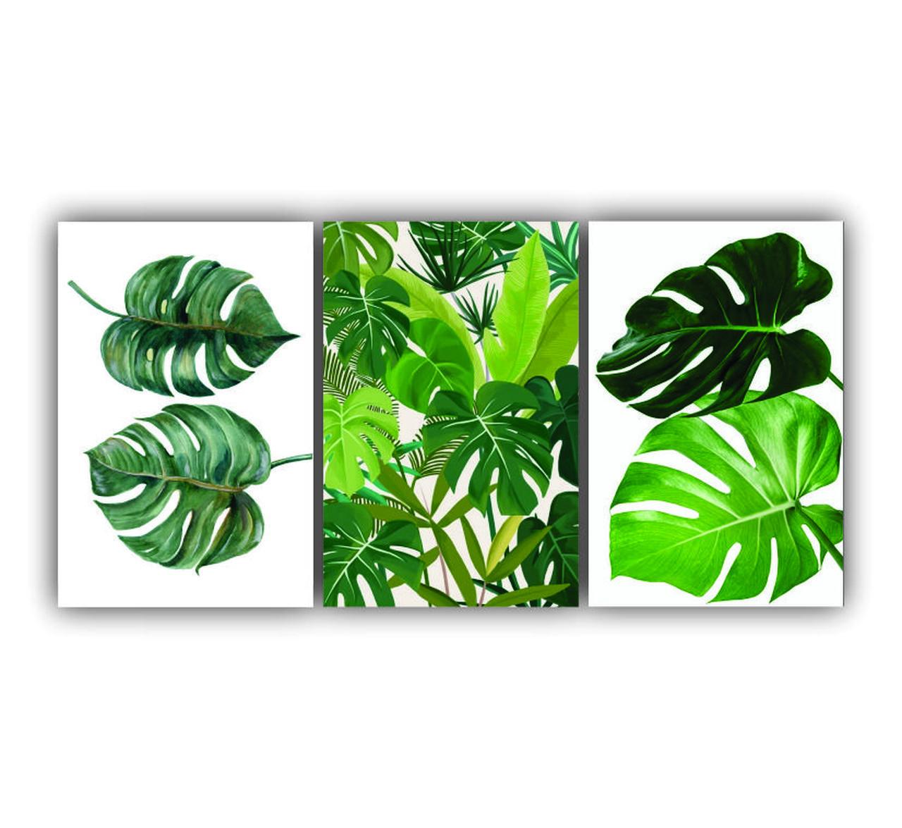 Quadro Natureza Folhas de Adão - Kit 3 telas