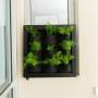 Quadro Vivo Jardim Vertical 58cm X 58cm