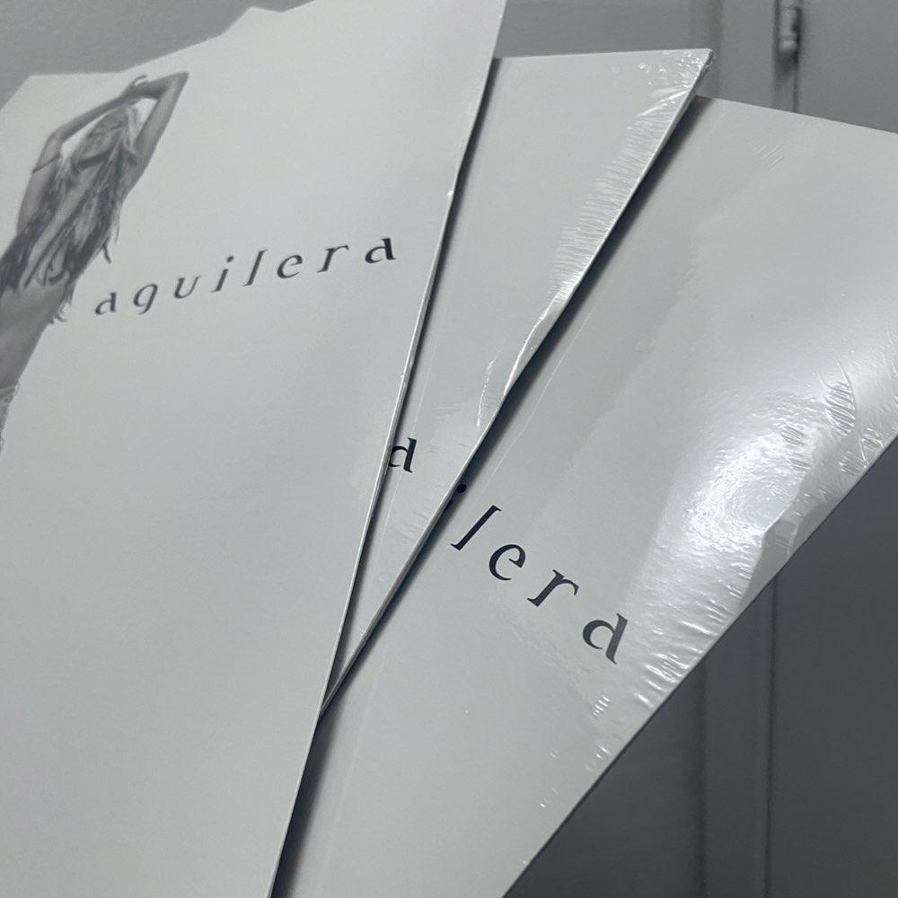 OUTLET - Christina Aguilera - Stripped [Double Black Vinyl]  - AVARIA - LEIA A DESCRIÇÃO