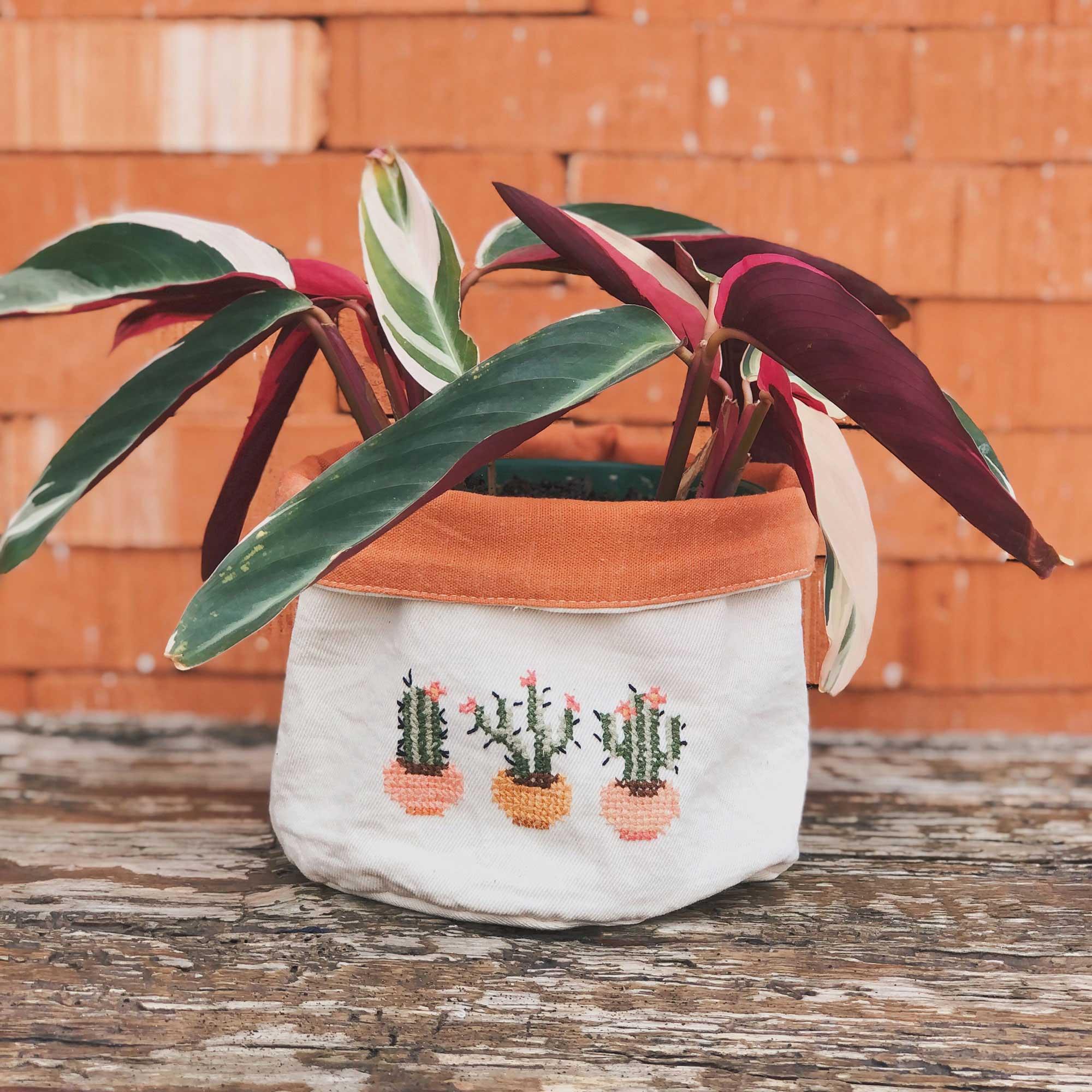 Cachepô Grande - Cactus