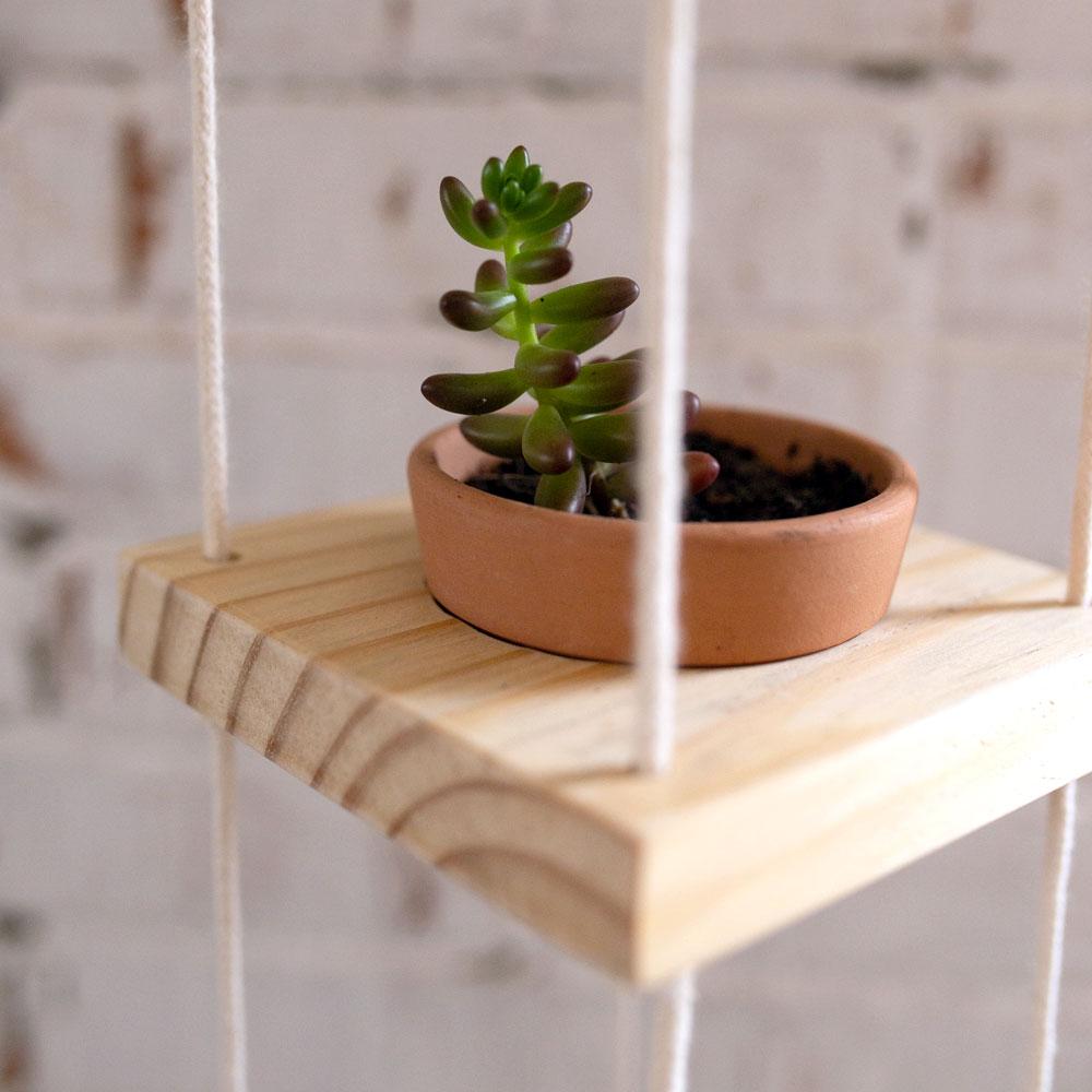 Hanger Pinus