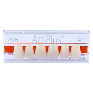 Dente Artiplus A58 Anterior Superior - Dentsply Sirona