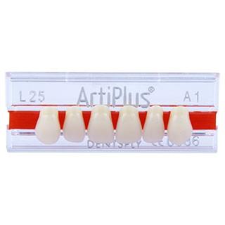 Dente Artiplus L25 Anterior Superior - Dentsply Sirona