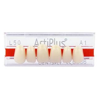 Dente Artiplus L50 Anterior Superior - Dentsply Sirona